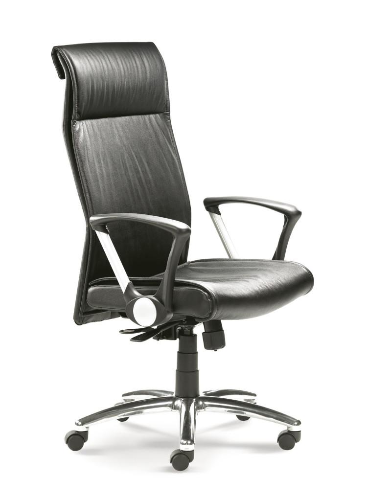 chefsessel in leder. Black Bedroom Furniture Sets. Home Design Ideas